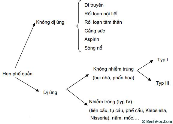 Nguyen-nhan-gay-ra-benh-hen-phe-quan-trong-Dong-Y-la-gi